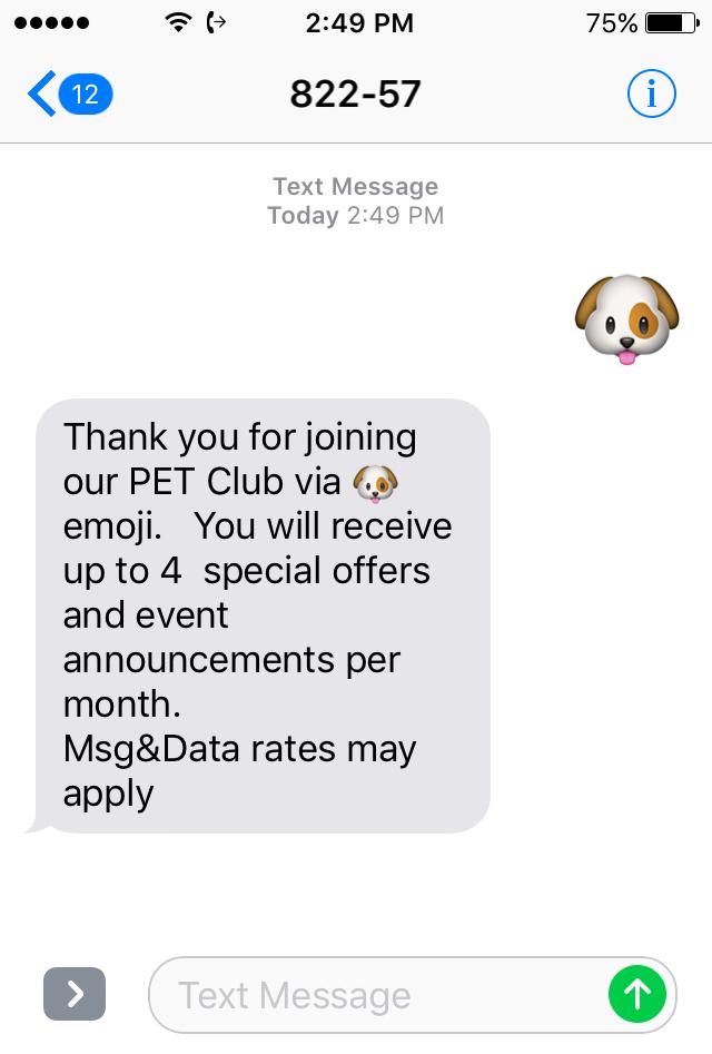 SMS Marketing with Emojis